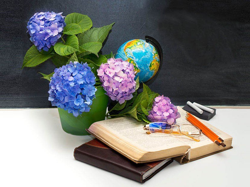 Кыштымские учителя будут отмечены грамотами и благодарностями