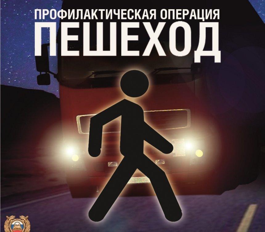 В Кыштыме дорожная полиция старается предотвратить ДТП с пешеходами