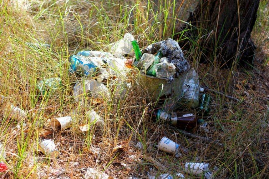 Жителя Кыштыма оштрафовали за выброс мусора в лесу