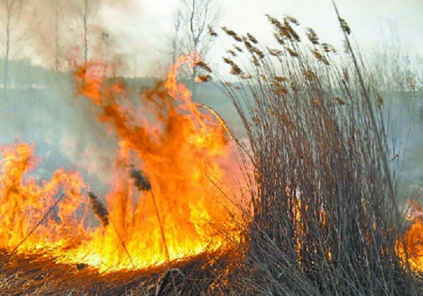 В Кыштымском округе мониторинг пожарной опасности ведётся ежесуточно